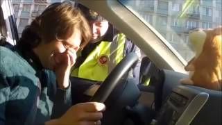 Говорящий хомяк троллит ДПС 2 (хомяк под видео)