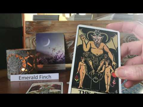 Libra ♎️ Nov 19 ~ Tarot Reading. I honour how I want to feel 💫