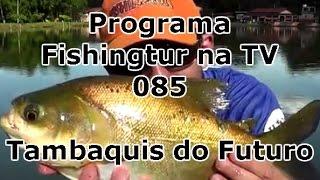Programa Fishingtur na TV 085 - Pesk Pag dos Amigos