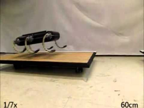 Legged Robot Performs Acrobatic Leaps