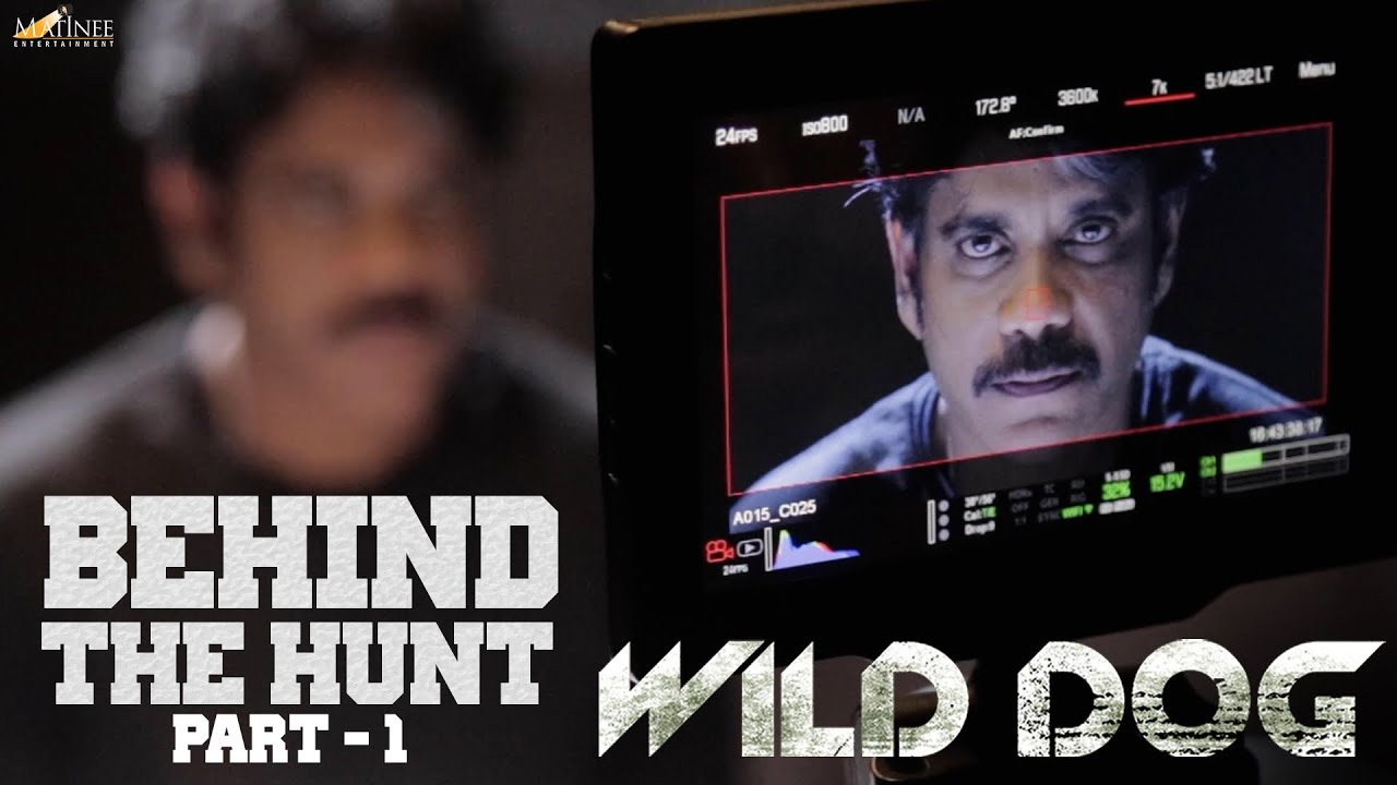 Wild Dog - Behind The Hunt Part 1