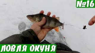 Зимняя рыбалка на окуня балда