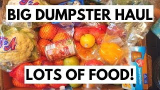 BIG DUMPSTER FOOD HAUL!