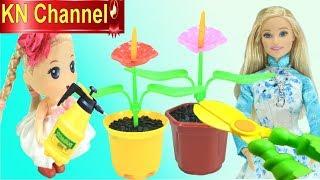 Đồ chơi trẻ em ĐỪNG THỨC KHUYA & BÀI HỌC TRỒNG HOA CỦA BÚP BÊ BARBIE | GIÁO DỤC MẦM NON KN Channel