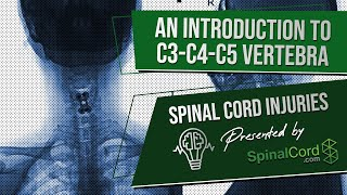 C3 C4 C5 Definitions. Cervical Spinal Cord Injury Symptoms, Causes, Treatments, and Recovery.
