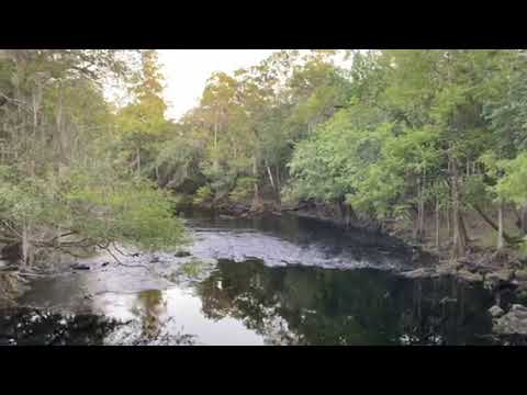 Video Of Magnolia Loop - O Leno State Park, FL