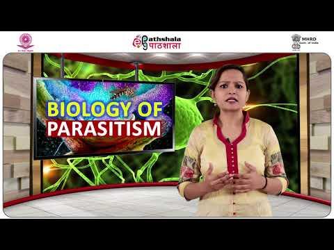 Tratament pentru prevenirea viermilor la copii