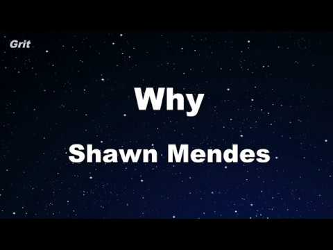 Why - Shawn Mendes Karaoke 【No Guide Melody】 Instrumental