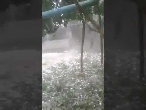 Hailstorm damages crops, fruits in northern districts