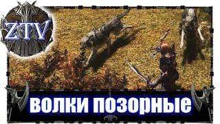 Моды на Скайрим ► Волки позорные \\ ZTV