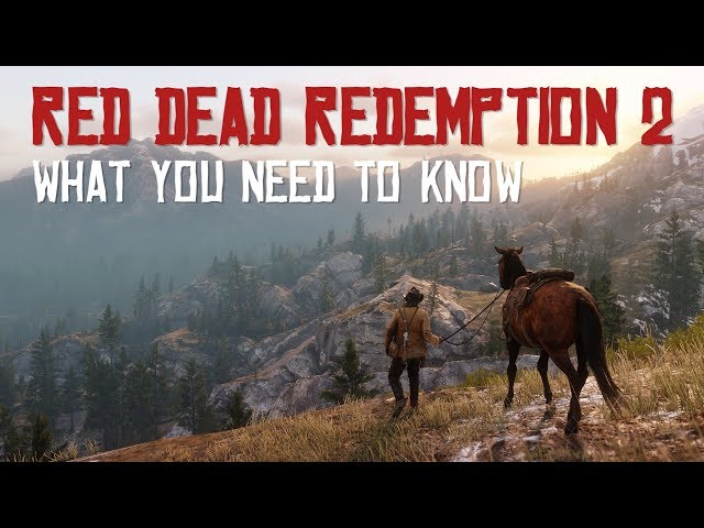 Red Dead Redemption 2 PS4 and Xbox One Requires Rockstar