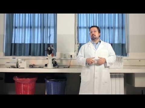 Normas para determinar el medidor de glucosa de azúcar en sangre