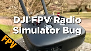 DJI FPV Radio Transmitter + Flight Simulator Bug