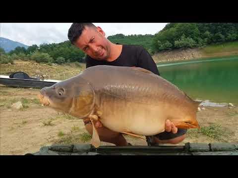 Pesca di video Uglich Volga