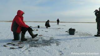 Рыбалка форум в усть каменогорске