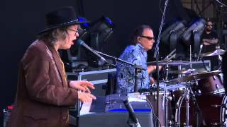 The Waterboys   The Whole Of The Moon   Live At The Isle Of Wight Festival 2014