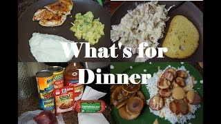 WHAT'S FOR DINNER ll  DEC 2018