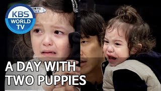 A day with two puppies [The Return of Superman/2019.06.09]