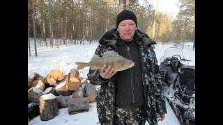 Отчет о рыбалке ханты мансийск