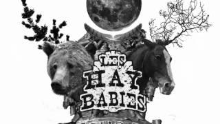 Les Hay Babies   La Bear Song