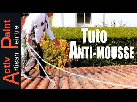 ⏩N°43 NETTOYAGE DE TOITURE pulverisation ALGINET toiture travail sur toiture DEMOUSSAGE ANTIMOUSSE