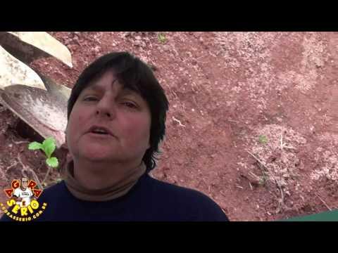 Diretora Ambiental Betinha diz : Que vai notificar moradores da Estrada Velha e reclama sobre o descaso da Sabesp de Juquitiba