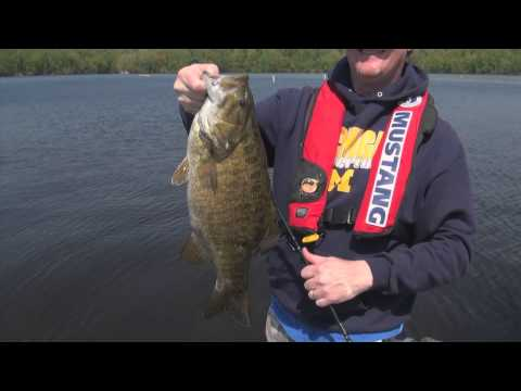 Hardy Dam Pond Smallmouth Bass Video Fishing Report