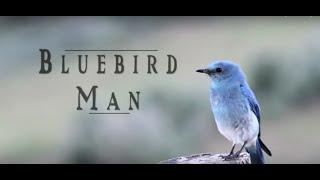 Bluebird Man - Al Larson Bluebird Recovery Documentary
