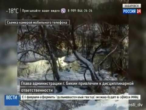 Вести-Хабаровск. Глава администрации г. Бикин привлечен к дисциплинарной ответственности