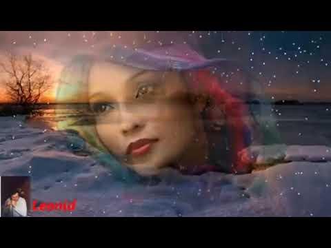 Роза на снегу Николай Замковец