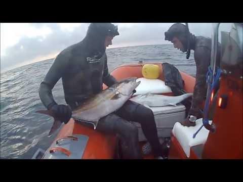 Giocare la pesca senza investimenti con ritiro dei soldi