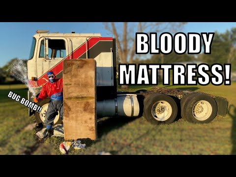 Download BUG BOMBING MY CABOVER FOR LOT LIZARDS!! HAHA HD Mp4 3GP Video and MP3