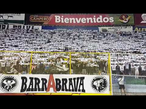 """""""#Hinchada del #Alianza canta su #himno a lo europeo"""" Barra: La Ultra Blanca y Barra Brava 96 • Club: Alianza"""