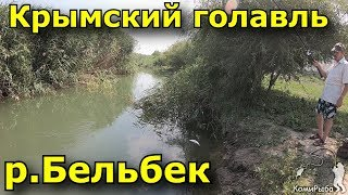 Рыбалка в севастополе на черной речке