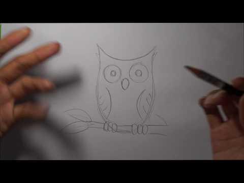 Cara Menggambar Burung Hantu Untuk Pemula Cara Menggambar