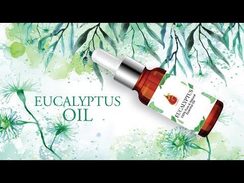 Eucalyptol Oil