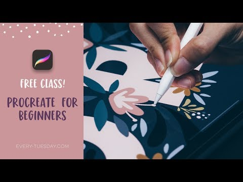 Free Course! Procreate for Beginners
