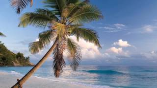 LOUNGE SUMMER  MOOD exotic worldwide nice beaches