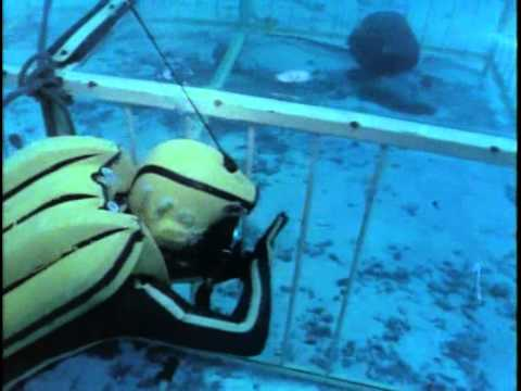 78- Одиссея Жака Кусто - Акулы
