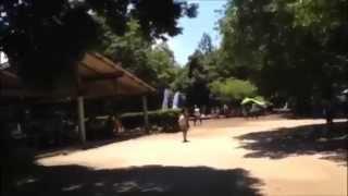 21世紀の森と広場のイメージ