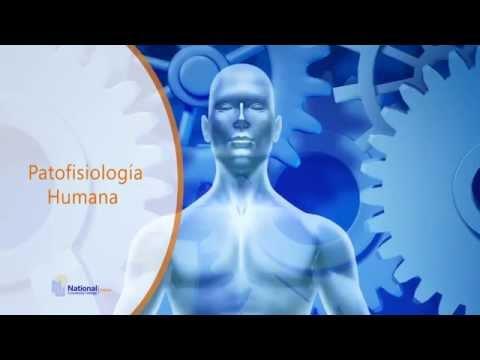 Patofisiología Humana