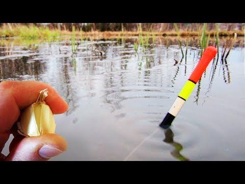 Ловля карася весной на поплавочную удочку видео саратов