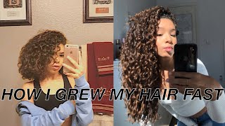 How To Grow Curly Hair FAST | Haircare Tips + Tricks For Long Healthy Hair