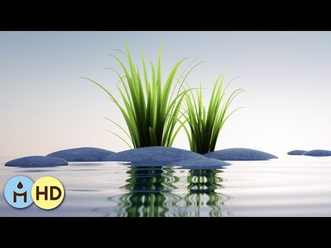 Relaxing Music for Sleeping: Relaxation Zen Anti Stress with Sounds of Nature (Rain Sounds)☂803