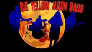 BIG YELLOW MOON BAND Watching The Detectives  cover 2015