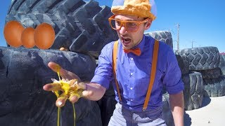 Learn Verbs with Blippi    Educational Digger Videos for Kids