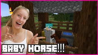 GETTING A CUTEST BABY HORSE!!!