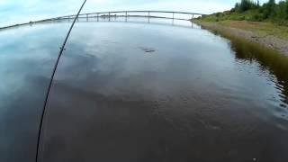 Рыбалка в котласе и его районе