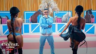 Kadr z teledysku El Pony tekst piosenki Daddy Yankee