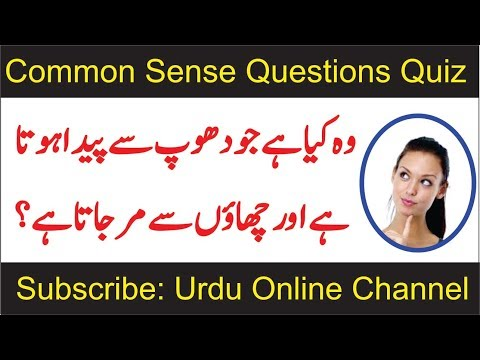 Common Sense Questions | Paheliyan in Urdu With Answer